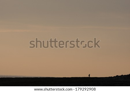 Lone distant walker on dusk beach