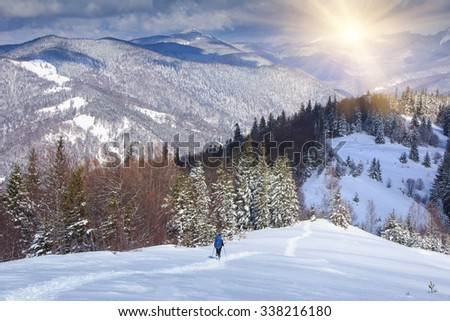 Lone hiker with a backpack walking along the trail in the winter mountains. View of snow-covered conifer trees and deep snow at sunshine. - stock photo