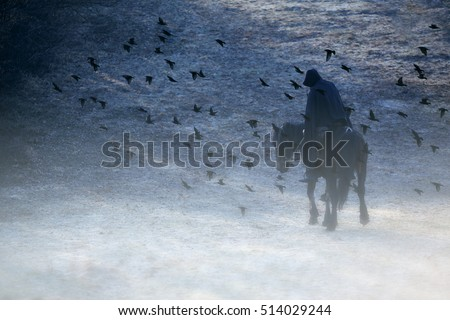 lone knight in thick fog surrounded birds, movie and drama concept, can be used for the cover of a book