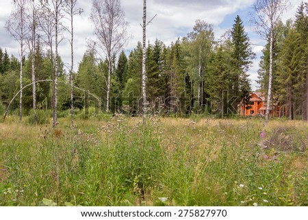 lone log cabin on the edge of a forest clearing - stock photo