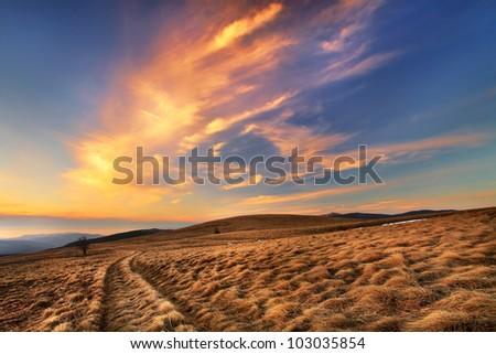 Lone path through fields of grass at sundown - stock photo