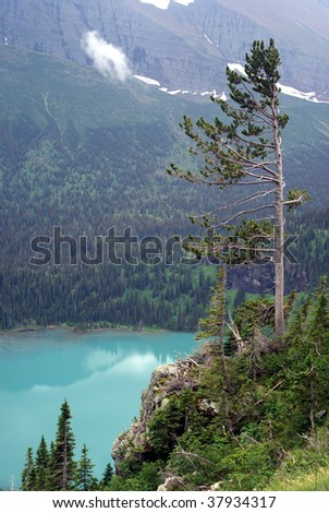 Lone Pine and Glacial Lake - stock photo