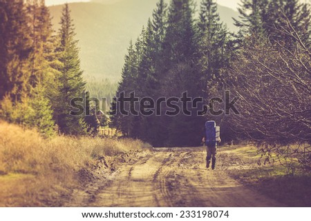 Lone traveler with a backpack walking along the road through the forest in the mountains. Filtered image:cross processed vintage effect.  - stock photo