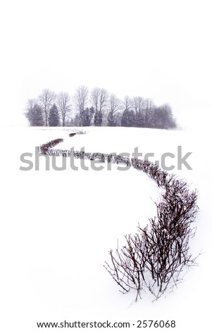 Lonely and tranquil snowy landscape - stock photo