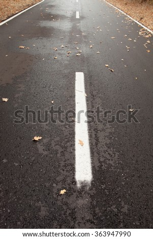 Lonely and wet road with leaves falling from trees in autumn - stock photo