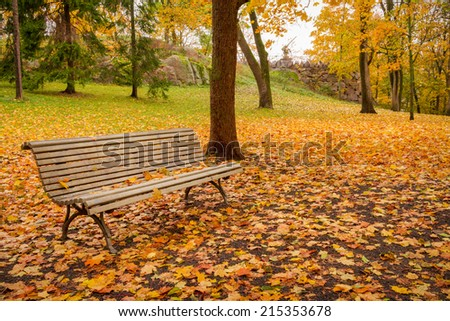 Lonely bench and fallen leaves in park in october