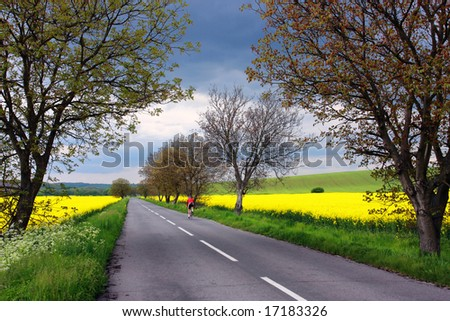 Lonely bicyclist on a rural road in Slovakia - stock photo