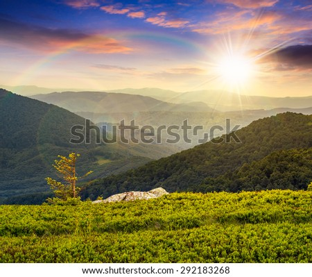 lonely conifer tree and stone on the edge of hillside with path in the grass on top of high mountain range under the rainbow in sunset light - stock photo