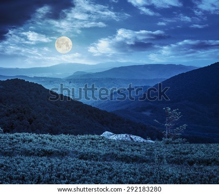 lonely conifer tree and stone on the edge of hillside with path in the grass on top of high mountain range at night in full moon light - stock photo