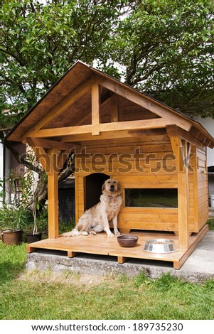 Lonely dog watching out of his new kennel - stock photo