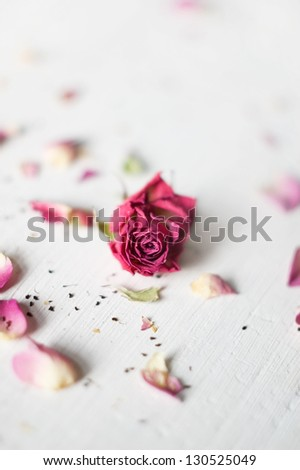 Lonely dry rose with petals