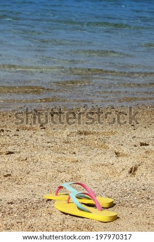 Lonely  flip flops at the beach