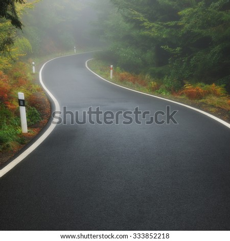 Lonely foggy forest road