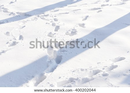 Lonely footpath in snowy park