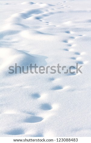 Lonely human drifted tracks on white snow in winter evening