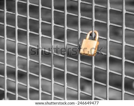 lonely love lock
