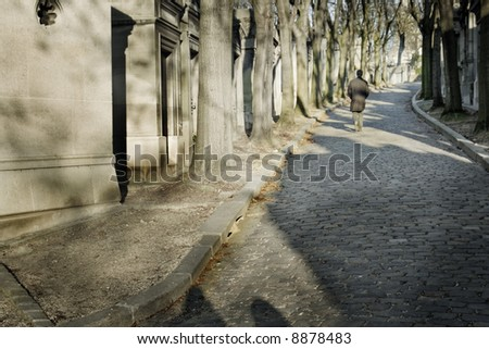 Lonely man in a cemetery alley. Horizontal shot. - stock photo