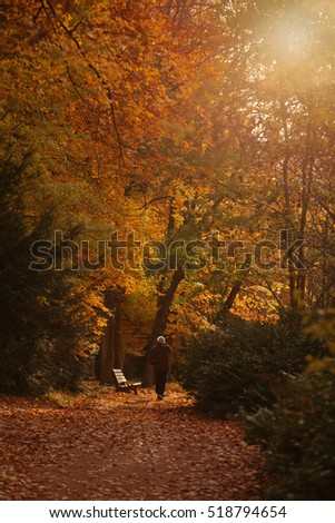 Lonely man in the autumn park