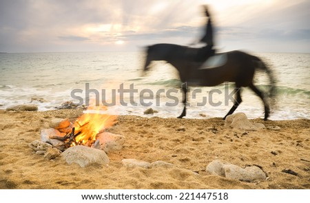 Lonely night fire on seacoast in the summer - stock photo