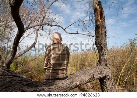 lonely old man sitting on tree and looking at the landscape