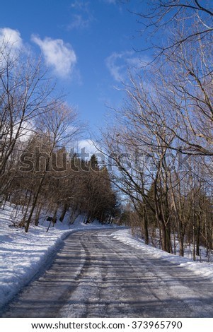 Lonely path, with ice and snow, winter forest landscape, blue sky - stock photo