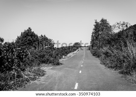 Lonely road through the green field. Black and white