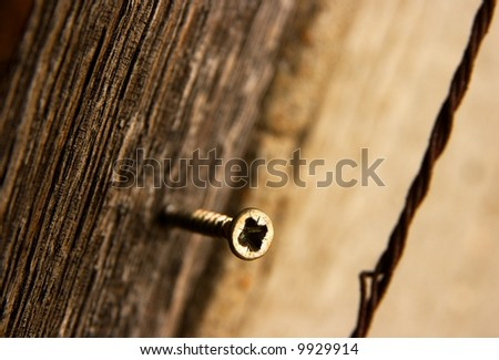 Lonely screw in a wooden door  (shallow DoF) - stock photo