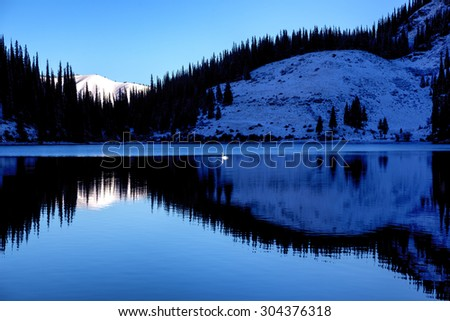 Lonely swan after first snowfall on the mountain lake Kolsai, Kazakhstan  - stock photo