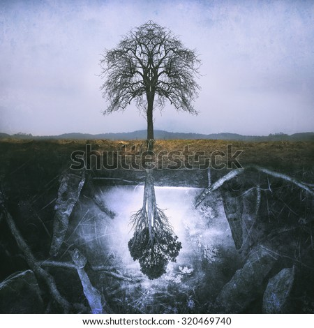 Lonely symmetric tree and a magical underworld - stock photo