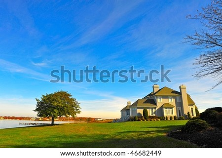 Lonely tree and house in the background of the blue sky