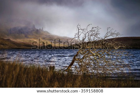 Lonely tree at Loch Fada on Isle of Skye with the famous Old Man if Storr in the background - Scotland, UK - stock photo
