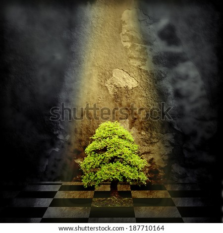 Lonely Tree in a sad dark room lit by the light of a sunbeam - stock photo