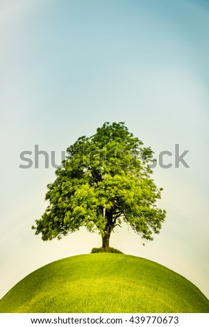 Lonely tree in the center on a green hill with a  retro feeling