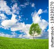 Lonely tree over green spring meadows in the mountains and blue sky - stock photo