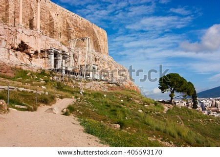 Lonely tree under Acropolis, Athens, Greece. Summer