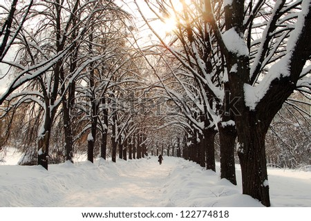 Lonely woman walking in winter time - stock photo