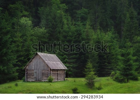 lonely wooden haynka in the middle of pine forest glade Carpathian forests europe - stock photo