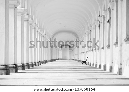 Long baroque colonnade in black and white tone - stock photo