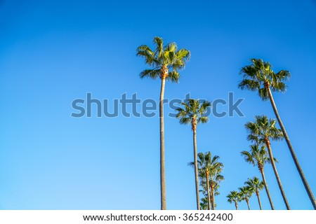 Long Beach, Los Angeles - stock photo