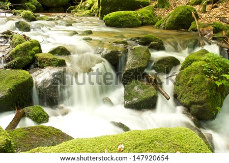 Long exposure closeup shot of the famous Gertelbach brook, Black Forest, Germany - stock photo