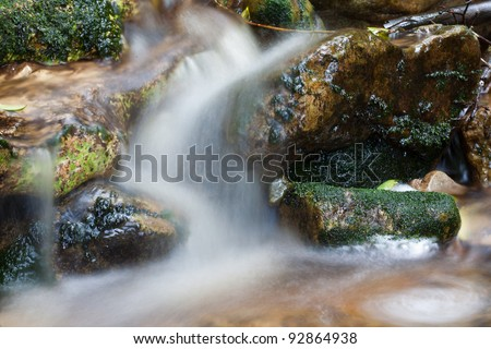 long exposure image of water and autumn leaves