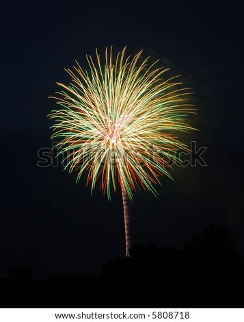 Long exposure of fireworks on the Fourth of July, looking like a palm tree - stock photo