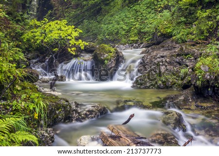 Long exposure photo of a mountain river with a waterfall,  blurred, white water washing big boulders and lush flora on banks