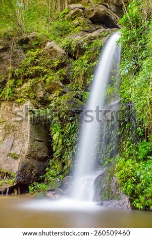 Long exposure shot of a beautiful waterfall in the jungle - stock photo