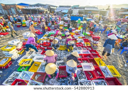 Long Hai, Vietnam - 03 July 2016: Activities of fish woman sellers in Long Hai market are preparing marine fish for the morning market.