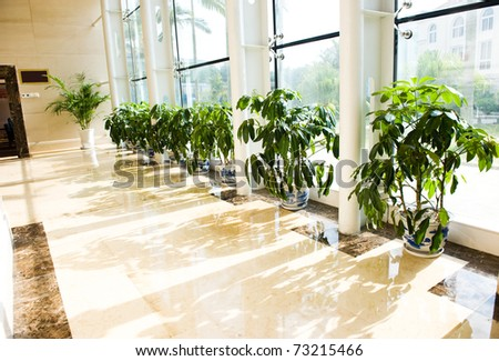 Long hotel corridor with potted plants and windows. - stock photo