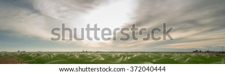 Long panoramic view of the lush California Farm Fields - stock photo