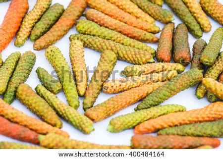 Long Pepper, Indian long pepper, Javanese long pepper