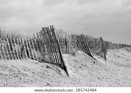 Long row of leaning wood dune fence in black and white.