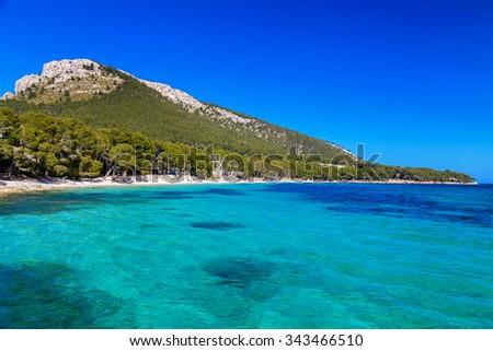 long sandy beach Cala Pi de La Posada at the cape Formentor, Mallorca, Spain - stock photo
